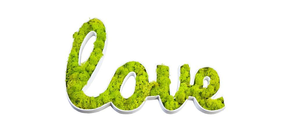 acheter-cadre-picto-vegetal-love